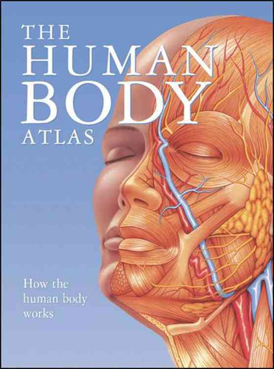 The Human Body Atlas: How the Human Body Works (Hardcover)