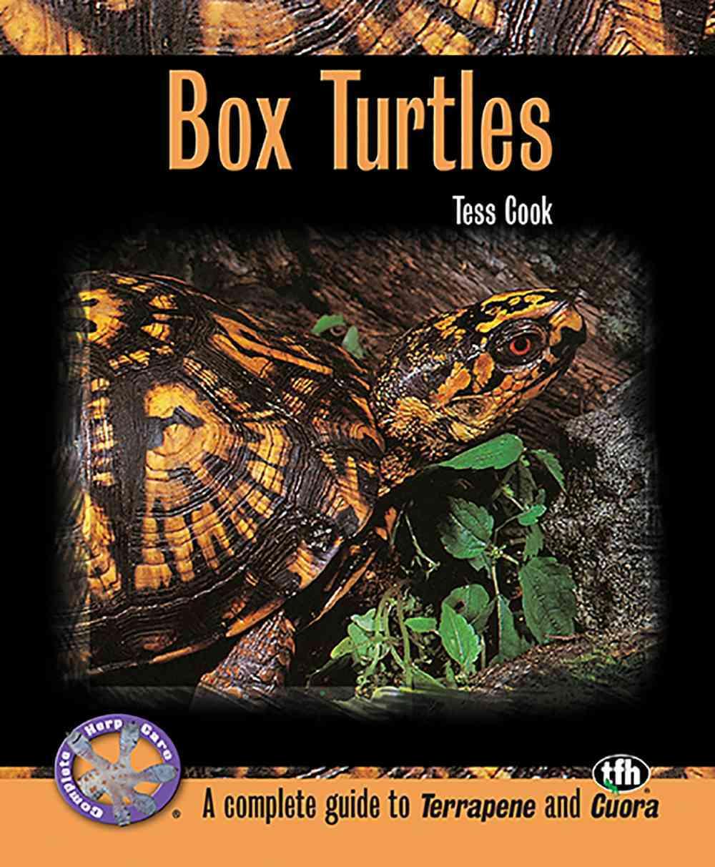 Box Turtles (Paperback)