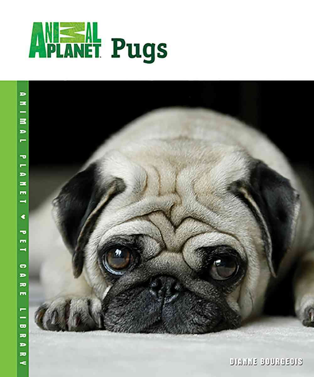 Pugs (Hardcover)