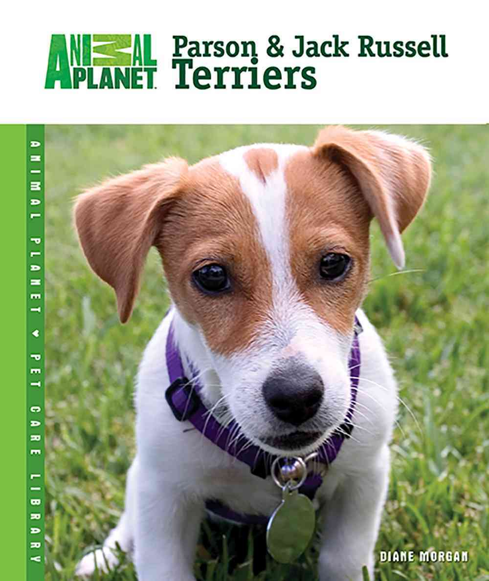 Parson & Jack Russell Terriers (Hardcover)