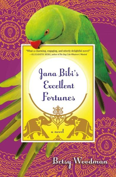 Jana Bibi's Excellent Fortunes (Paperback)