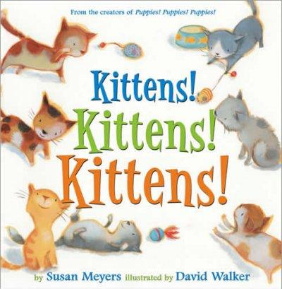 Kittens! Kittens! Kittens! (Hardcover)