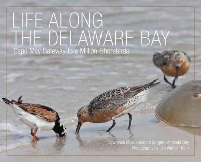 Life Along the Delaware Bay: Cape May, Gateway to a Million Shorebirds (Hardcover)