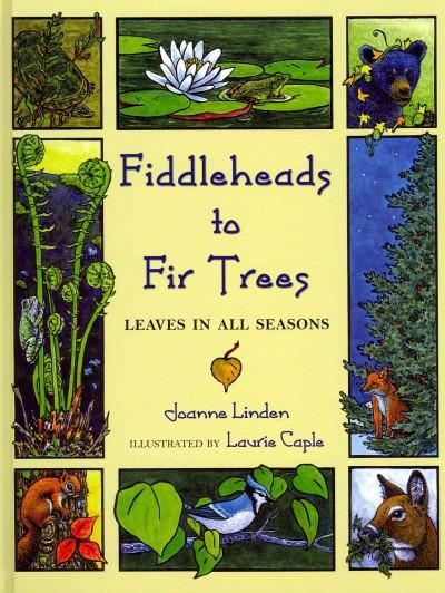 Fiddleheads to Fir Trees: Leaves in All Seasons (Hardcover)