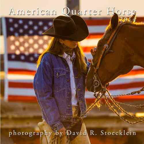 American Quarter Horse 2014 Calendar (Calendar)