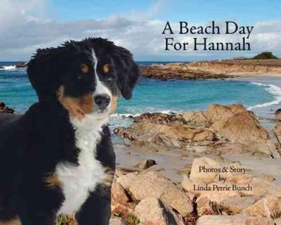 A Beach Day for Hannah (Hardcover)