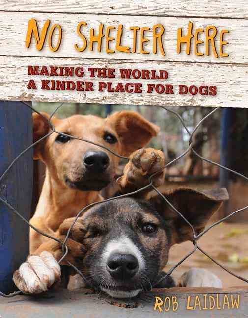 No Shelter Here: Making the World a Kinder Place for Dogs (Hardcover)