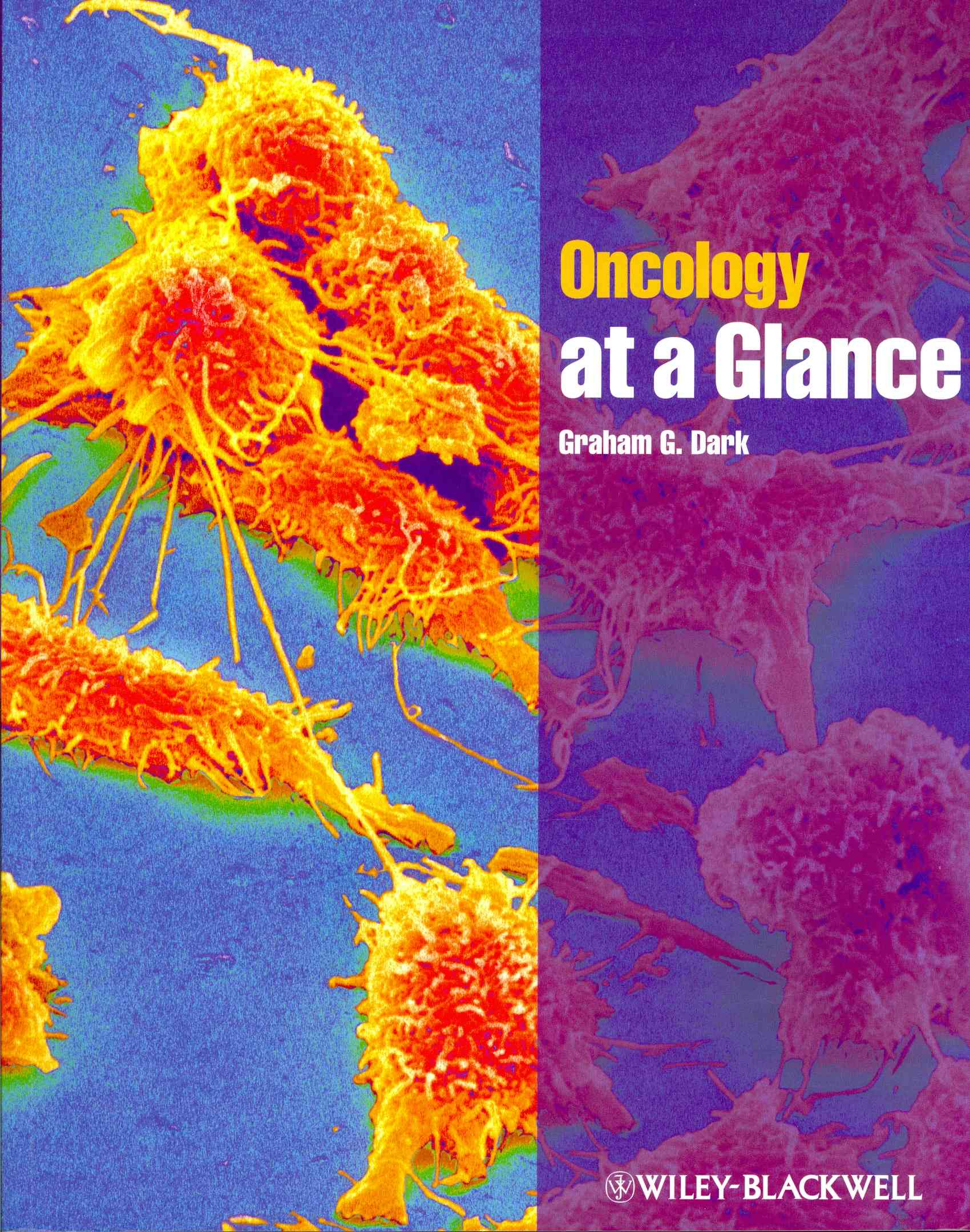Oncology at a Glance (Paperback)
