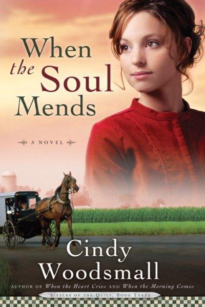 When the Soul Mends (Paperback)