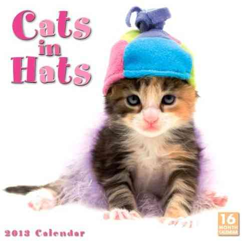 Cats in Hats 2013 Calendar (Calendar)