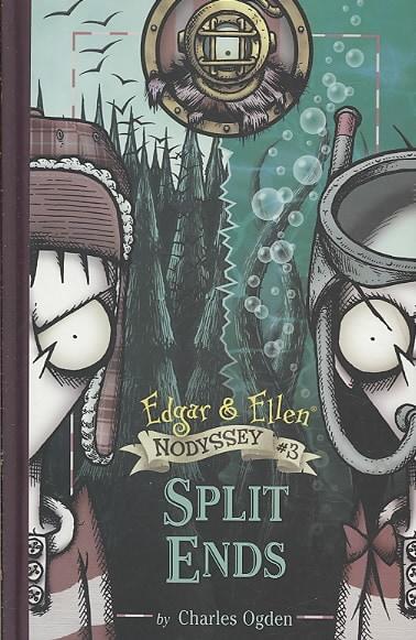 Split Ends (Hardcover)