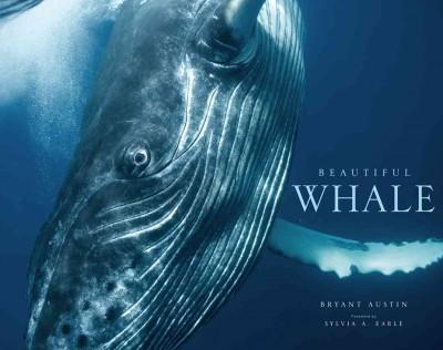 Beautiful Whale (Hardcover)