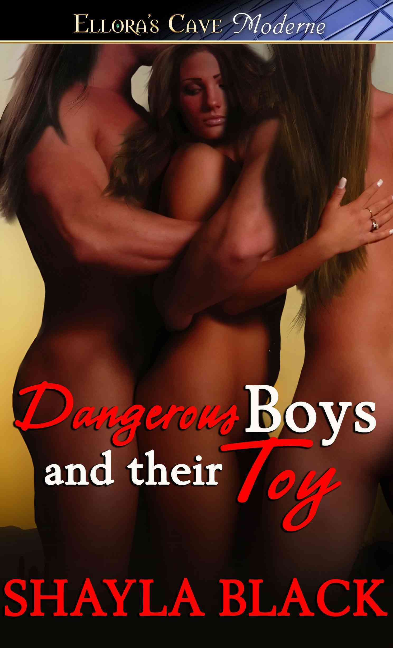 Dangerous Boys and Their Toy (Paperback)