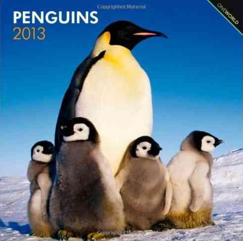 Penguins 2013 Calendar (Calendar)