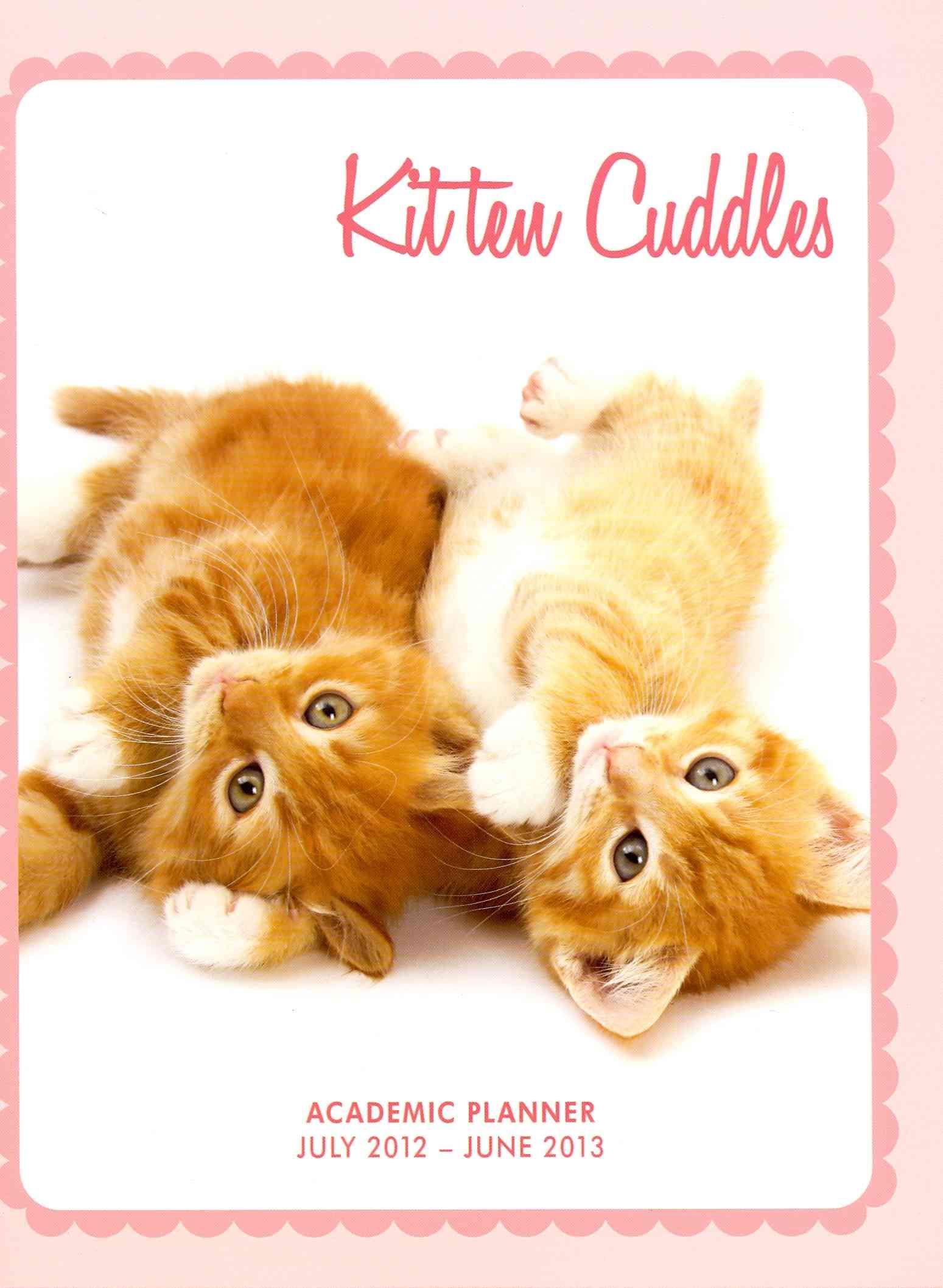 Kitten Cuddles 2013 Academic Planner