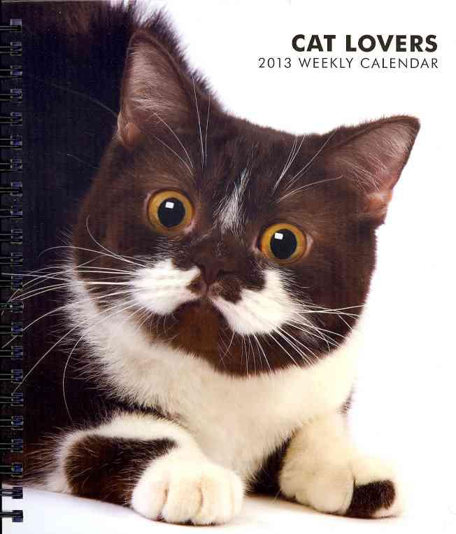 Cat Lovers 2013 Calendar (Calendar)