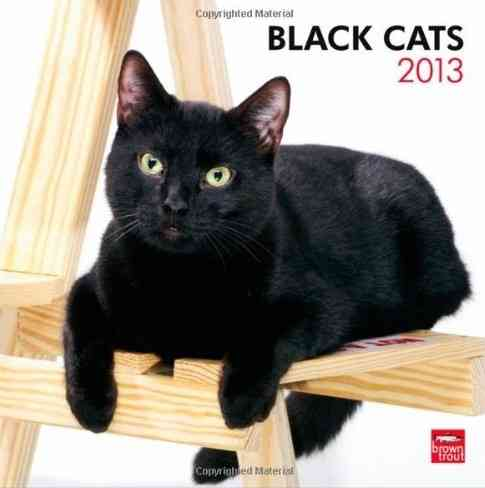 Black Cats 2013 Calendar (Calendar)