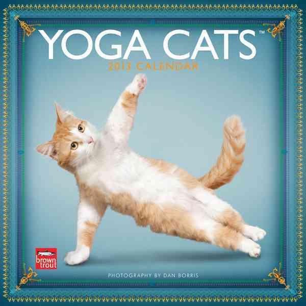 Yoga Cats 2013 Calendar (Calendar)