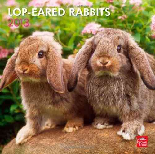 Lop-Eared Rabbits 2013 Calendar (Calendar)