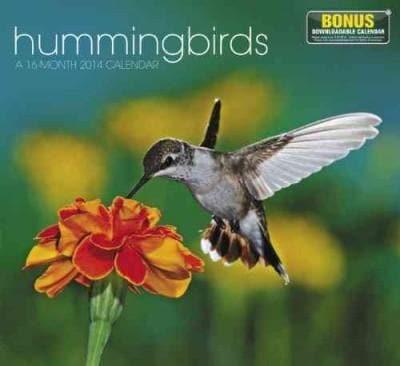 Hummingbirds 2014 Calendar (Calendar)