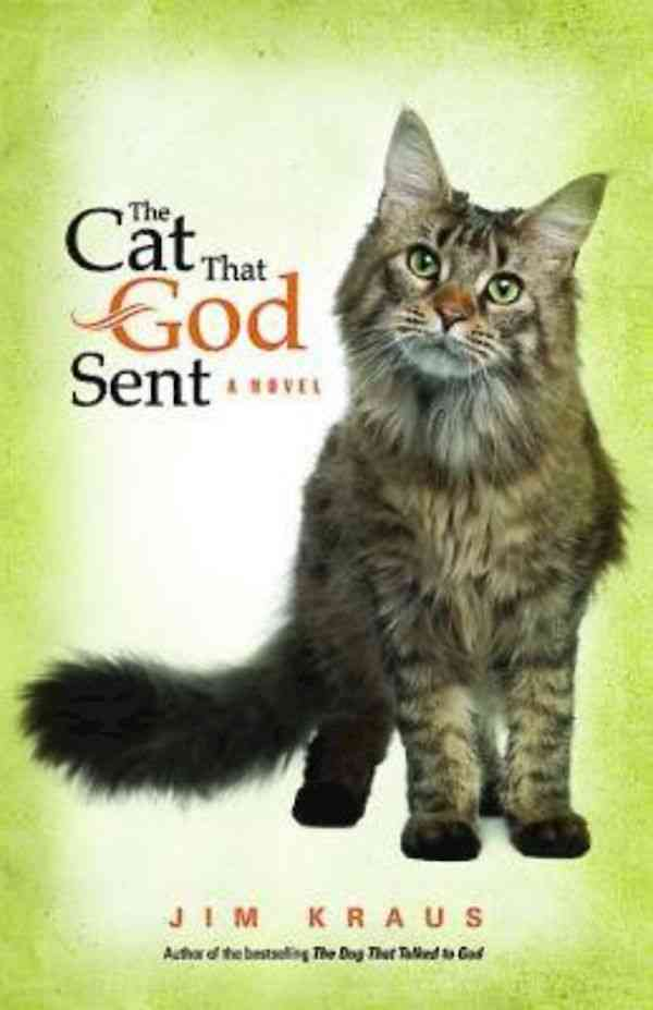 The Cat That God Sent (Paperback)