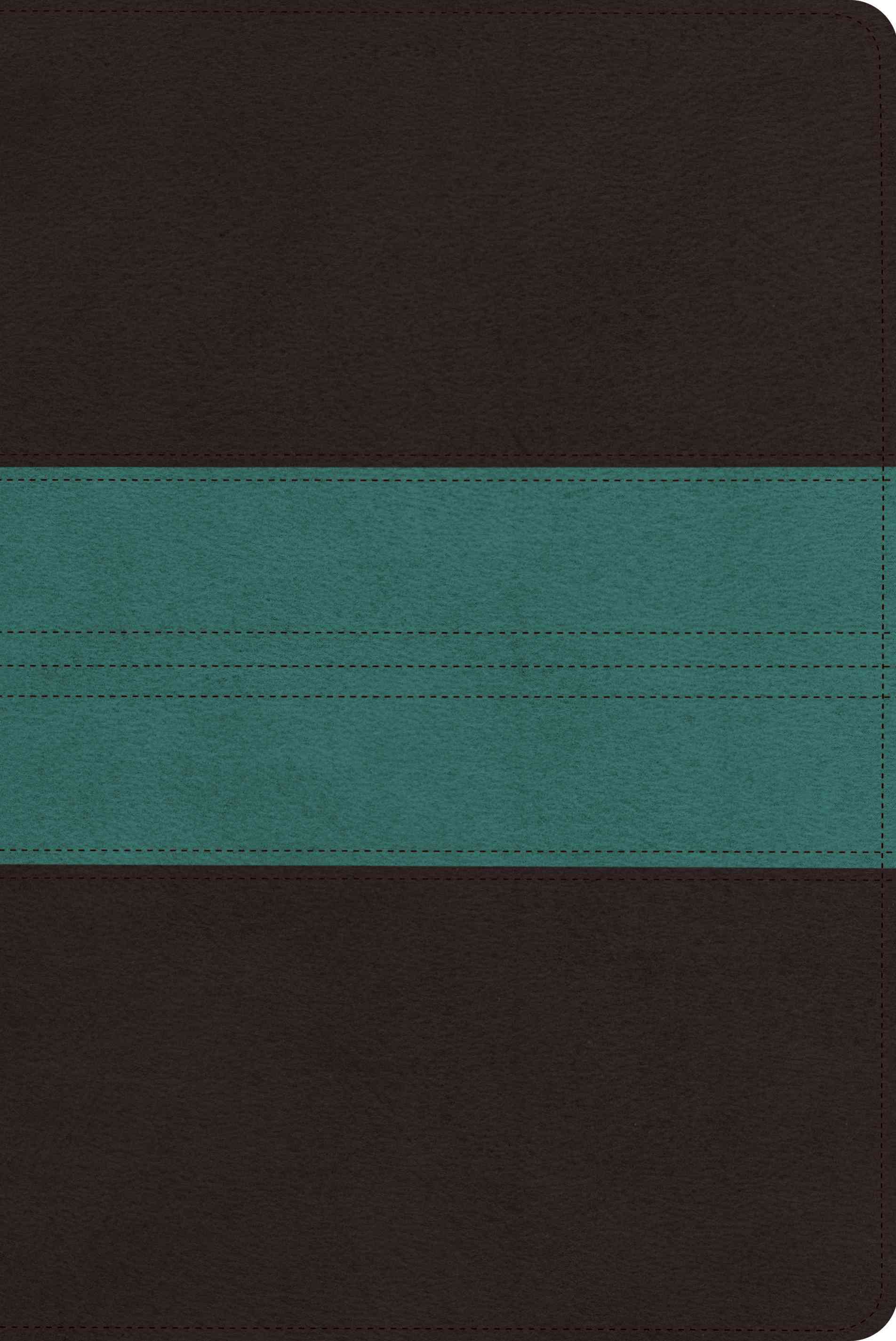 Holy Bible: English Standard Version, Dark Brown / Teal, Trail Design, TruTone, Personal Reference (Paperback)