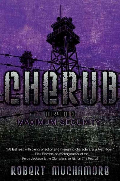 Maximum Security (Paperback)