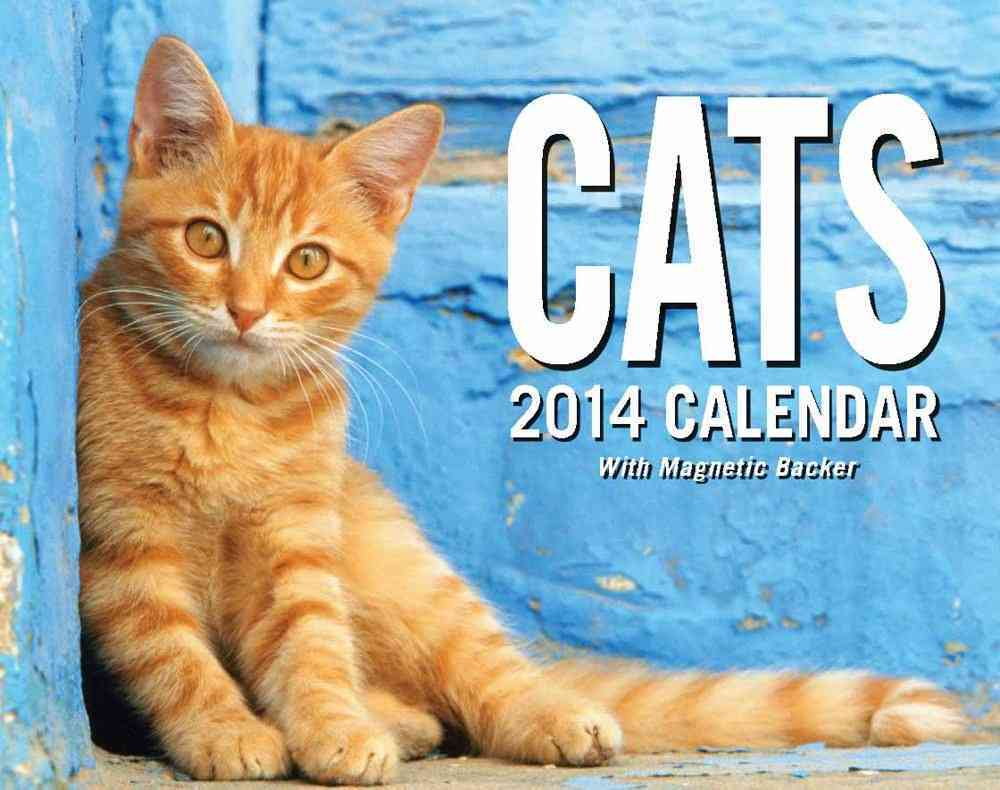 Cats Day-to-Day 2014 Calendar (Calendar)