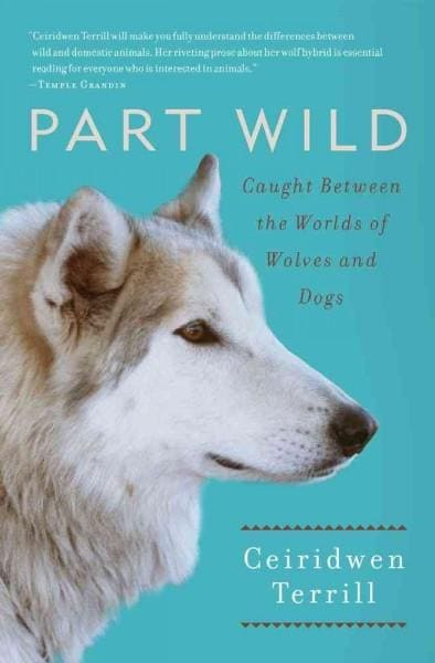 Part Wild: Caught Between the Worlds of Wolves and Dogs (Paperback)