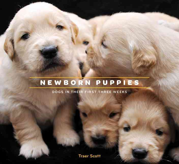 Newborn Puppies: Dogs in Their First Three Weeks (Hardcover)