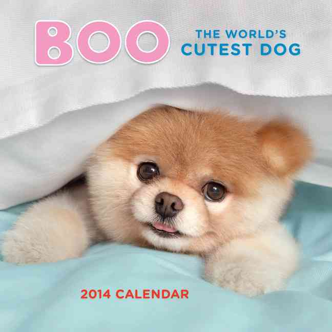 Boo The World's Cutest Dog 2014 Calendar (Calendar)