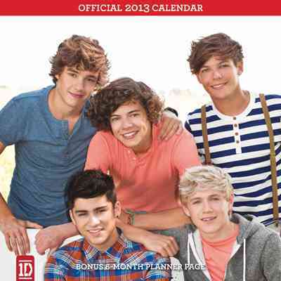 One Direction 2013 Calendar (Calendar)