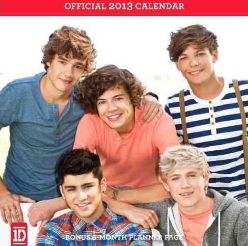 1d 2013 Calendar (Calendar)