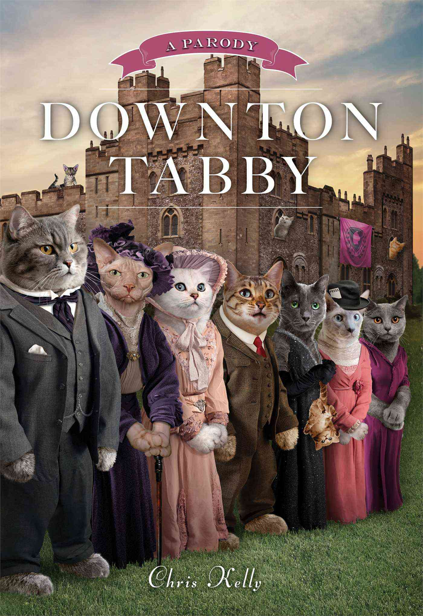 Downton Tabby (Hardcover)