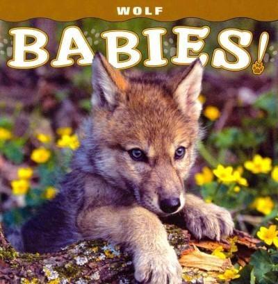 Wolf Babies! (Board book)