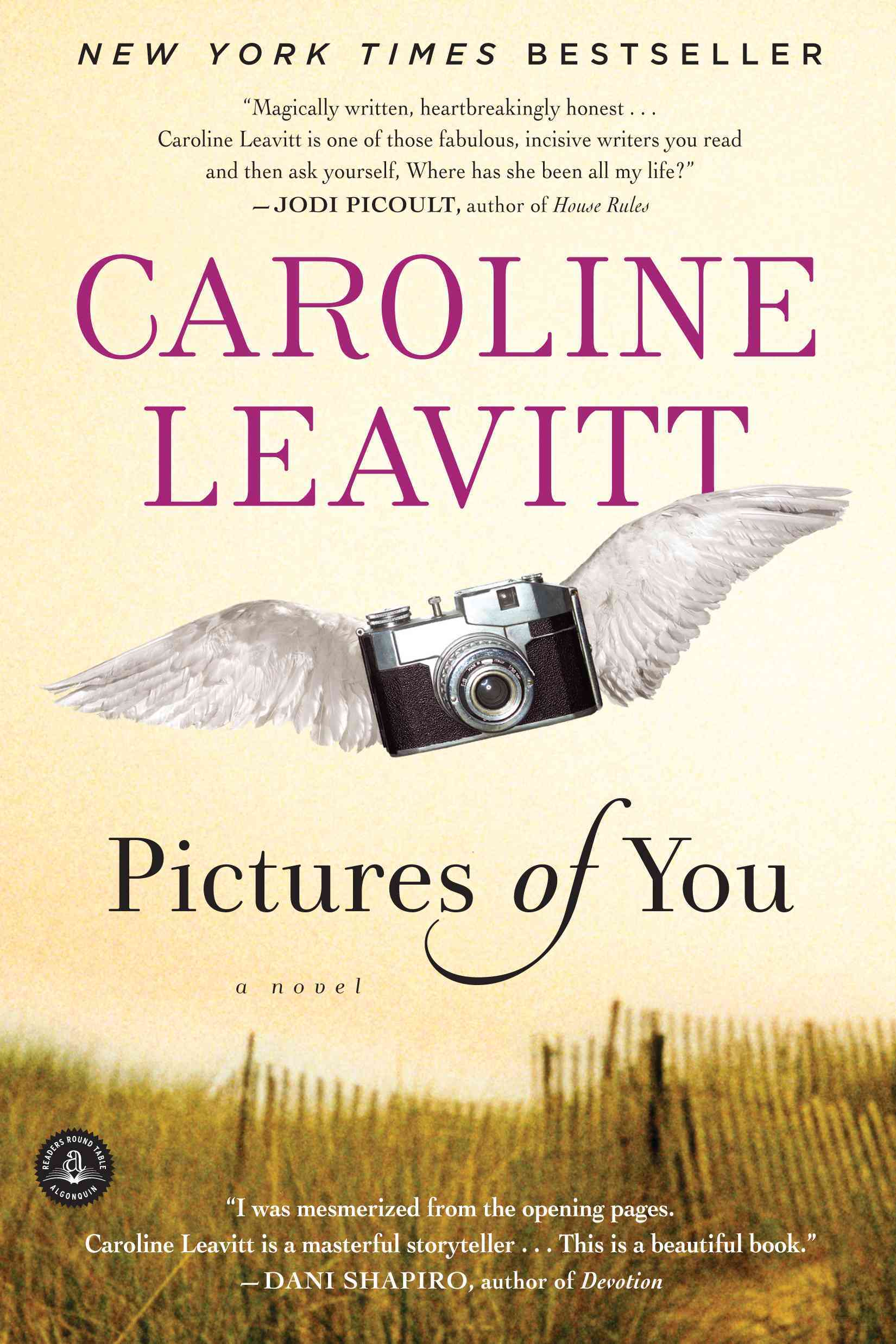 Pictures of You (Paperback)
