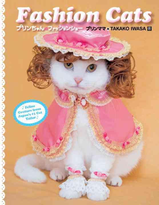 Fashion Cats (Paperback)