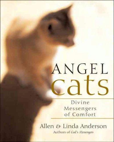 Angel Cats: Divine Messengers Of Comfort (Paperback)