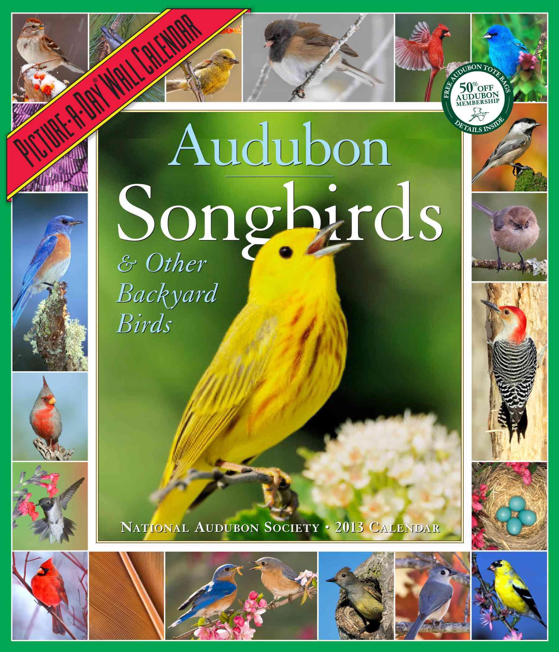 Audubon Songbirds & Other Backyard Birds Calendar 2013