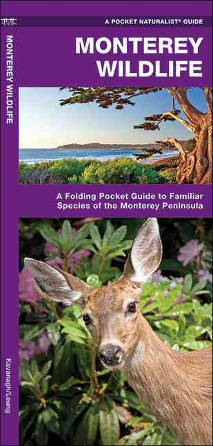 Monterey Wildlife: A Folding Pocket Guide to Familiar Species of the Monterey Peninsula (Wallchart)