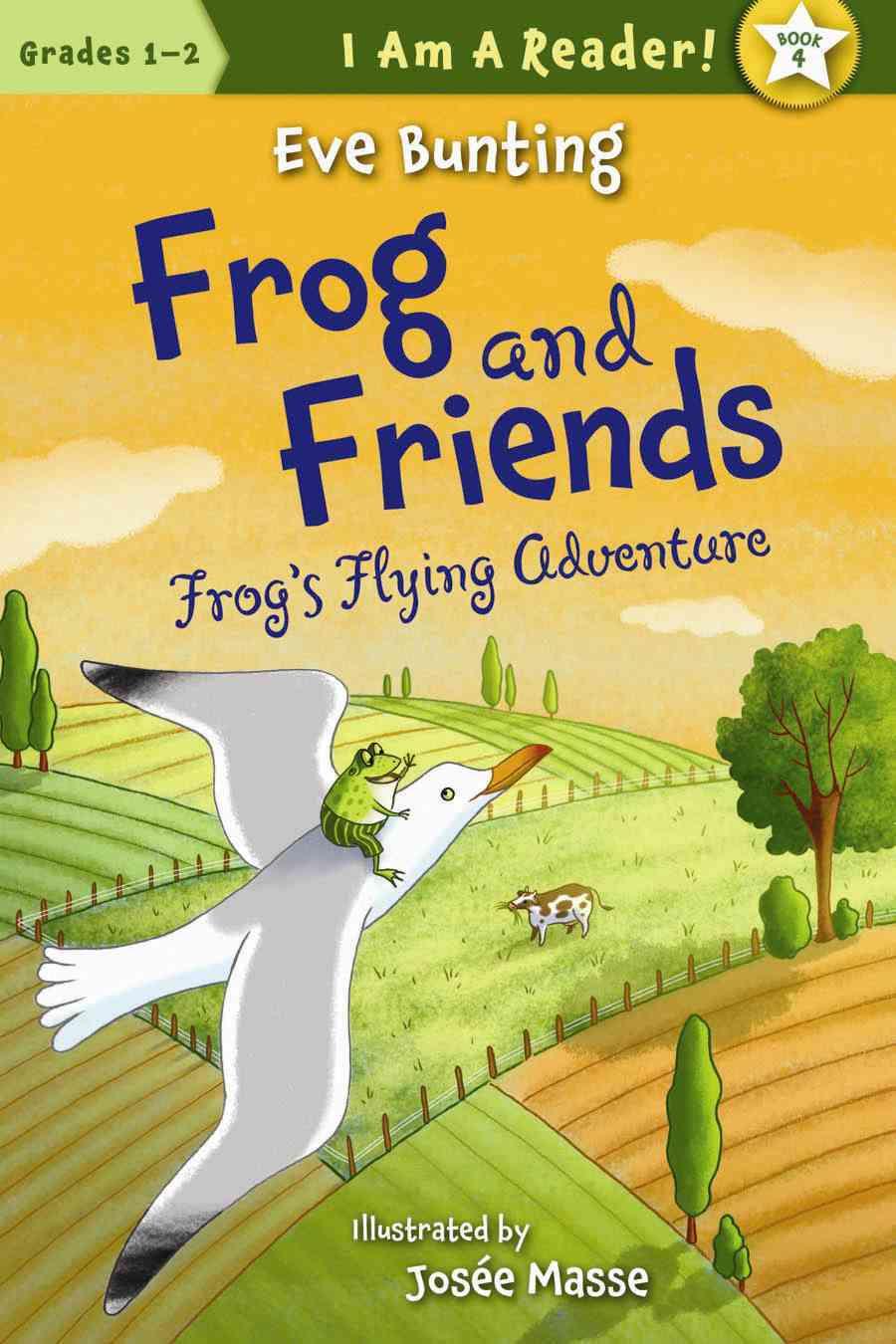 Frog's Flying Adventure (Paperback)
