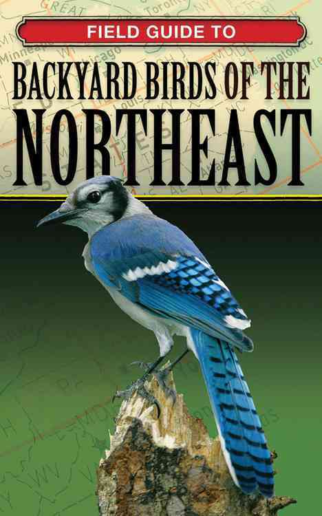 Field Guide to Backyard Birds of the Northeast (Paperback)