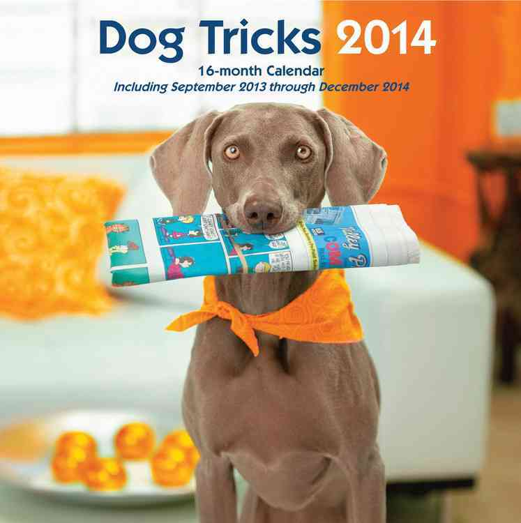 Dog Tricks 2014 Calendar: September 2013 Through December 2014 (Calendar)