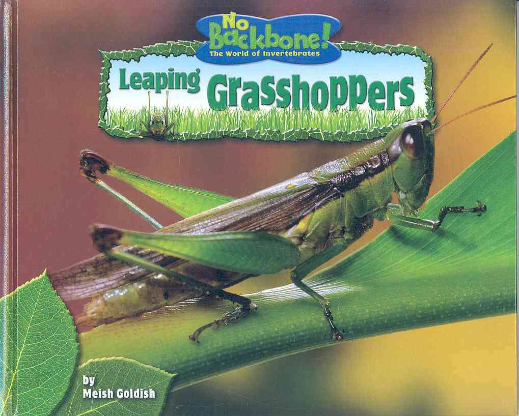 Leaping Grasshoppers (Hardcover)
