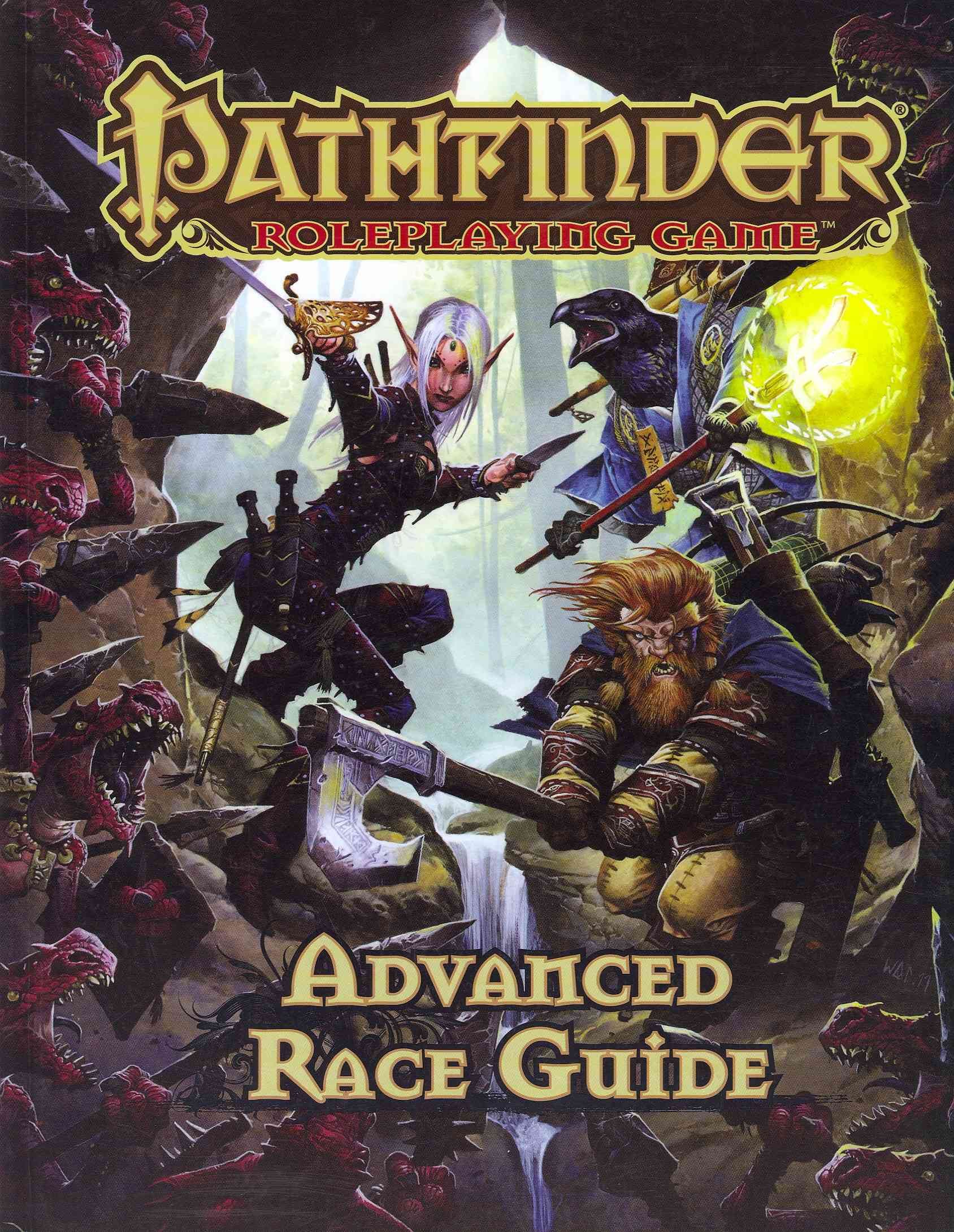 Advanced Race Guide (Hardcover)