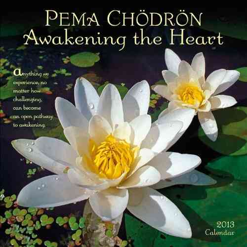 Pema Chodron 2013 Calendar (Calendar)