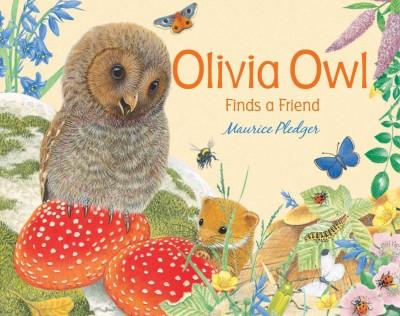 Olivia Owl Finds a Friend (Board book)