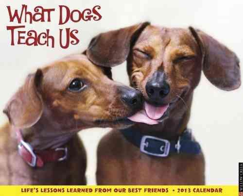 What Dogs Teach Us 2013 Calendar