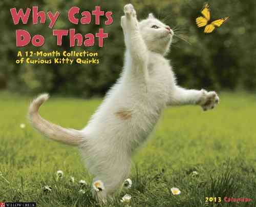 Why Cats Do That 2013 Calendar