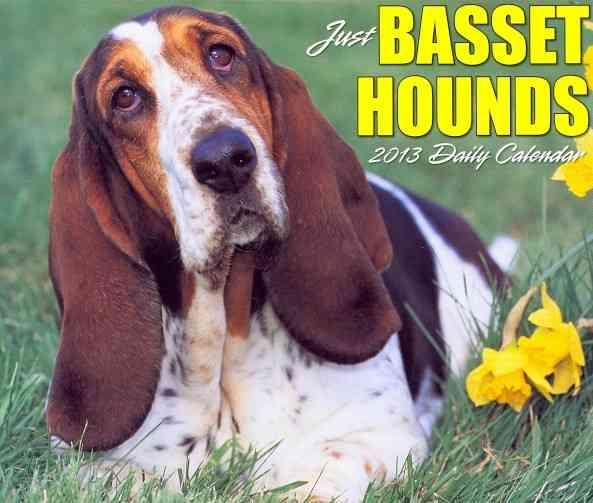 Just Basset Hounds Box Calendar (Calendar)
